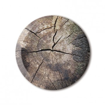 Cracked Stump