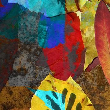 Leaves 5 print