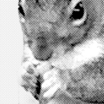 Squirrel 3 (halftone, left) print