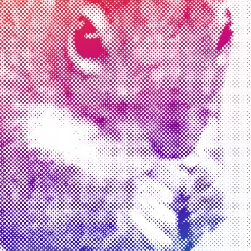 Squirrel 3 (halftone, rainbow gradient, right) print