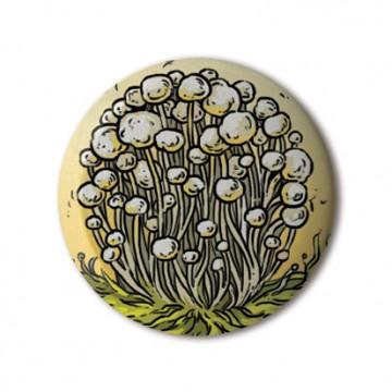 Alba Clamshell Mushrooms