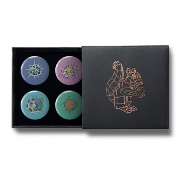 Gift Box: 4 button badges (Radiolaria)