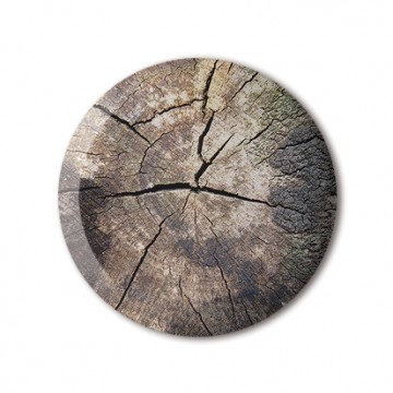 Gift Box: 4 button badges (Tree Stumps)
